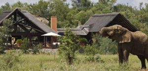 mateya-safari-lodge